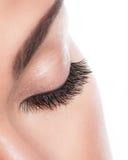 Μακροχρόνια σγουρά eyelashes Στοκ εικόνες με δικαίωμα ελεύθερης χρήσης
