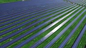 Μακροχρόνιες σειρές των φωτοβολταϊκών ηλιακών πλαισίων στον πράσινο τομέα στην ηλιόλουστη ημέρα απόθεμα βίντεο