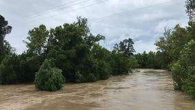 Μακροχρόνιος πλημμυρίζοντας τυφώνας Harvey Livingston Τέξας κολπίσκου βασιλιάδων απόθεμα βίντεο