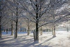 μακροχρόνιος χρόνος σκιών  Στοκ Εικόνα