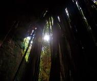 μακροχρόνιο φως του ήλιου ριζών Στοκ Φωτογραφίες