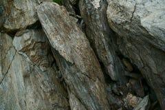 Μακρο άποψη των πετρών Στοκ Εικόνα
