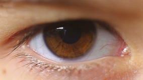 Μακρο αναβοσβήνοντας παιδί ματιών κινηματογραφήσεων σε πρώτο πλάνο eyelashes απόθεμα βίντεο