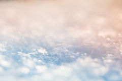 Μακρο εικόνα snowflakes μπλε snowflakes ανασκόπησης άσπρος χειμώνας Στοκ Φωτογραφίες