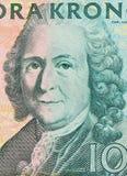 μακρο κοιτάξτε του σουηδικού kronor της ονομαστικής αξίας 100   Στοκ εικόνα με δικαίωμα ελεύθερης χρήσης
