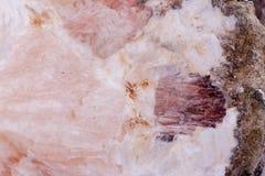 Μακρο ορυκτή πέτρα Chalcedony σε ένα άσπρο υπόβαθρο Στοκ εικόνα με δικαίωμα ελεύθερης χρήσης