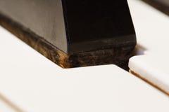 μακρο πιάνο Στοκ εικόνα με δικαίωμα ελεύθερης χρήσης