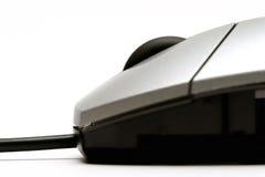 μακρο ποντίκι Στοκ Φωτογραφία