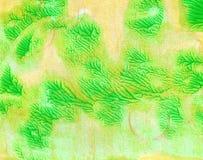 Μακρο πράσινη φρεσκάδα σύστασης με το acrylics στοκ εικόνες