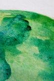 Μακρο πράσινος με τις μπλε συστάσεις 2 Watercolour απεικόνιση αποθεμάτων