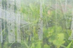 μακρο πτώσεις νερού σύστασης Πολλές μικρές πτώσεις του νερού στην πλαστική ταινία στοκ εικόνες