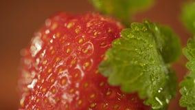 Μακρο πυροβολισμός των πτώσεων νερού στις φράουλες και τα φύλλα μεντών Μετακινηθείτε τον πυροβολισμό φιλμ μικρού μήκους