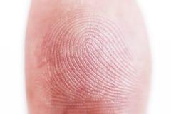 Μακρο πυροβοληθε'ν δακτυλικό αποτύπωμα Στοκ εικόνα με δικαίωμα ελεύθερης χρήσης