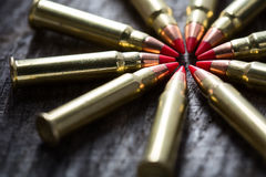 Μακρο πυροβολισμός των μικρών -μικρός-caliber κύκλων ανιχνευτών με το α Στοκ Εικόνα