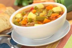 μακρο ρηχό λαχανικό σούπας εστίασης Στοκ φωτογραφία με δικαίωμα ελεύθερης χρήσης