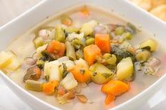 μακρο ρηχό λαχανικό σούπας εστίασης Στοκ εικόνα με δικαίωμα ελεύθερης χρήσης