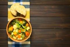 μακρο ρηχό λαχανικό σούπας εστίασης Στοκ εικόνες με δικαίωμα ελεύθερης χρήσης