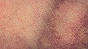 Μακρο στενός επάνω των ανθρώπινων σωματικών κυττάρων, φλέβες στοκ φωτογραφία