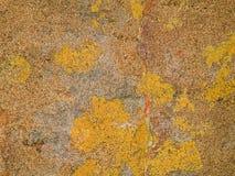 Μακρο σύσταση - πέτρα - που διαστίζεται Στοκ Εικόνες