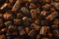 Μακρο σύσταση υποβάθρου ψωμιού μελισσών Φυσική θεραπεία για την αύξηση ασυλίας Προϊόντα μελισσοκομίας Apitherapy Στοκ εικόνες με δικαίωμα ελεύθερης χρήσης