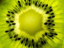 Μακρο φέτα ακτινίδιων αναμμένη από κάτω από Στοκ εικόνα με δικαίωμα ελεύθερης χρήσης