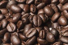 Μακρο φασόλι καφέ για τις επιλογές menufor στοκ εικόνα με δικαίωμα ελεύθερης χρήσης