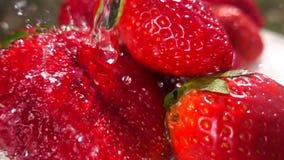 μακρο φράουλες και ράντισμα νερού απόθεμα βίντεο
