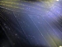 Μακρο φωτογραφία ενός φτερού πεταλούδων στοκ φωτογραφίες με δικαίωμα ελεύθερης χρήσης