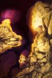 Μακρο φωτογραφία μιας κίτρινης και πορφυρής φέτας βράχου αχατών Στοκ φωτογραφία με δικαίωμα ελεύθερης χρήσης