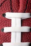 μακρο όψη αμερικανικού π&omicron Στοκ εικόνες με δικαίωμα ελεύθερης χρήσης