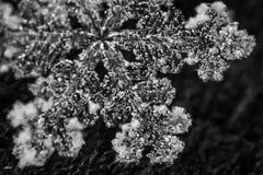 Μακρο snowflake γραπτά 7 Στοκ εικόνες με δικαίωμα ελεύθερης χρήσης