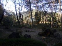 Μακρυά από τον ήλιο στοκ εικόνα με δικαίωμα ελεύθερης χρήσης