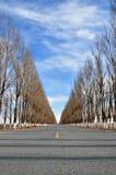 Μακρύς δρόμος στοκ φωτογραφία
