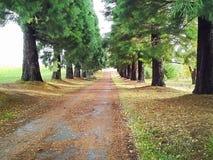 Μακρύς δρόμος, Στοκ Εικόνες
