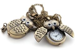 μακρύ ρολόι κουκουβαγιών αλυσίδων Στοκ Φωτογραφία