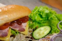Μακρύ σάντουιτς με το κρέας, τα λαχανικά και τη σάλτσα σχαρών Στοκ εικόνα με δικαίωμα ελεύθερης χρήσης