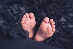 Μαλακά νεογέννητα πόδια μωρών ενάντια σε ένα μαύρο κάλυμμα στοκ φωτογραφίες με δικαίωμα ελεύθερης χρήσης
