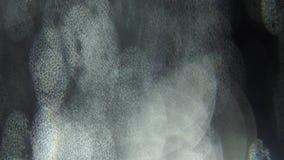 Μαλακές ελαφριές ακτίνες που λάμπουν στο σκοτεινό υπόβαθρο Ελαφριές διαρροές, επικαλύψεις, μεταβάσεις φιλμ μικρού μήκους