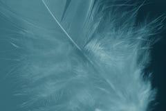 μαλακότητα Στοκ φωτογραφίες με δικαίωμα ελεύθερης χρήσης
