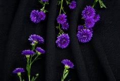 Μαλακό μαύρο ύφασμα Στοκ εικόνες με δικαίωμα ελεύθερης χρήσης
