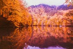 Μαλακό τοπίο φθινοπώρου άποψης, φθινοπωρινό πάρκο, φύση πτώσης στοκ εικόνα με δικαίωμα ελεύθερης χρήσης