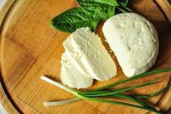 Μαλακό τυρί με τα πράσινα στοκ εικόνα