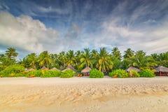 Μαλδίβες, εξωτικός προορισμός για τις διακοπές ή μήνας του μέλιτος, άσπρη παραλία κοραλλιών με τους φοίνικες στον παράδεισο στοκ εικόνα με δικαίωμα ελεύθερης χρήσης