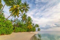 Μαλδίβες, εξωτικός προορισμός για τις διακοπές ή μήνας του μέλιτος, άσπρη παραλία κοραλλιών με τους φοίνικες στον παράδεισο στοκ φωτογραφίες