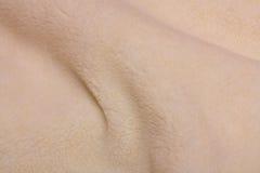 μαλλί κυμάτων σύστασης Στοκ Εικόνες