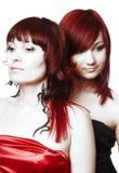 μαλλιαρό κόκκινο ζευγών στοκ εικόνες