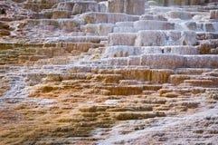 Μαμμούθ καυτές ανοίξεις, εθνικό πάρκο Yellowstone Στοκ φωτογραφία με δικαίωμα ελεύθερης χρήσης