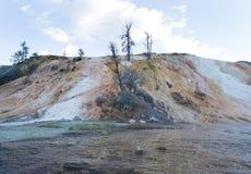 Μαμμούθ καυτές ανοίξεις στη βόρεια περιοχή της εθνικής ισοτιμίας Yellowstone Στοκ εικόνες με δικαίωμα ελεύθερης χρήσης