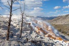 Μαμμούθ καυτές ανοίξεις, Yellowstone, Ουαϊόμινγκ, ΗΠΑ Στοκ Φωτογραφίες