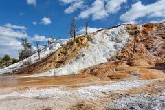 Μαμμούθ καυτές ανοίξεις, Yellowstone, Ουαϊόμινγκ Στοκ Εικόνες